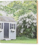Blooming Tree Next To Shed Wood Print