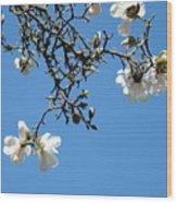 Blooming Trees Art Print White Magnolia Flowers Baslee Troutman Wood Print