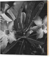 Bloomisted Wood Print