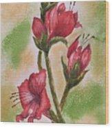 Blooms 'n Red Wood Print