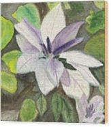 Blossom At Sundy House Wood Print