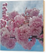 Blossom Bliss Wood Print
