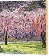 Blossom Fantasy Wood Print