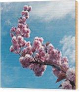 Blossom Impressions Wood Print