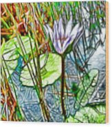 Blossom Lotus Flower In Pond Wood Print