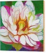 Blossom Lotus Flower Wood Print