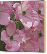 Blossom Time Wood Print