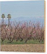 Blossom Trail 1 Wood Print