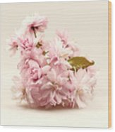 Blossoming Cherry Twig Wood Print