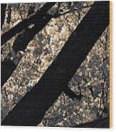 Blossoming In Santa Fe Wood Print