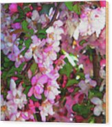 Blossoms 1 Wood Print