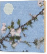 Blossoms In Moonlight Wood Print