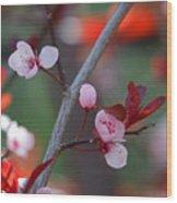 Blossoms Petite Wood Print