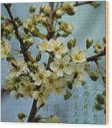 Blossomtime Wood Print