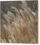Blowin In The Wind Wood Print