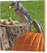 Blu Goes Nuts Wood Print