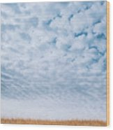 Blue And Amber Wood Print