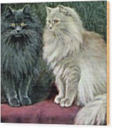Blue And Cream Persians Wood Print