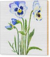 Blue And Purple Pansies  Wood Print