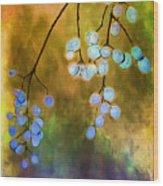 Blue Autumn Berries Wood Print by Judi Bagwell