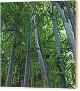 Blue Bamboo Wood Print