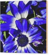 Blue Beauties Wood Print