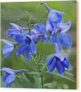 Blue Bell Wood Print