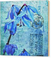 Blue Bells On Vintage 1936 Postcard Wood Print