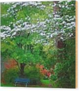 Blue Bench In Park Wood Print
