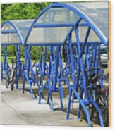 Blue Bicycle Berth Wood Print