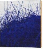 Blue Bird Wood Print