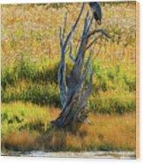 Blue Bird Not Quite Stumped Wood Print