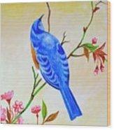 Blue Bird On Cherry Blossom  Wood Print