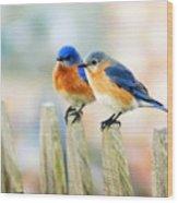 Blue Birds Wood Print
