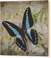 Blue Black Butterfly Dreams Wood Print
