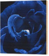 Blue Blue Rose Wood Print