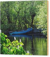Blue Boat Cong Ireland Wood Print
