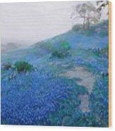 Blue Bonnet Field Early Morning Wood Print