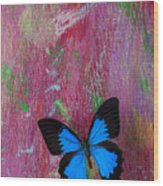 Blue Butterfly On Colorful Wooden Wall Wood Print