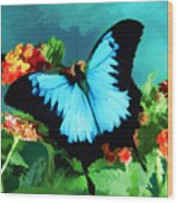 Blue Butterfly On Lantana Plant Oil Painting Wood Print