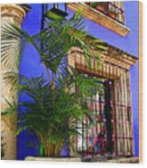 Blue Casa With Fern Wood Print