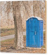 Blue Chemical Toilet In The Park Wood Print