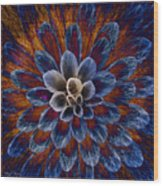 Blue Dahlia Wood Print