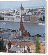Blue Danube Wood Print