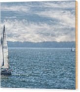 Blue Days On Lake Erie Wood Print