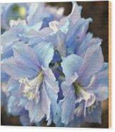 Blue Delphinium Wood Print