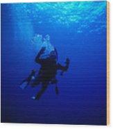 Blue Diver Wood Print