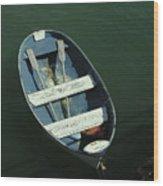 Blue Dory Wood Print