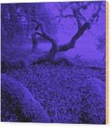 Blue Dreaming Moon Wood Print