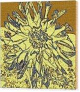 Blue-edged Dahlia Wood Print